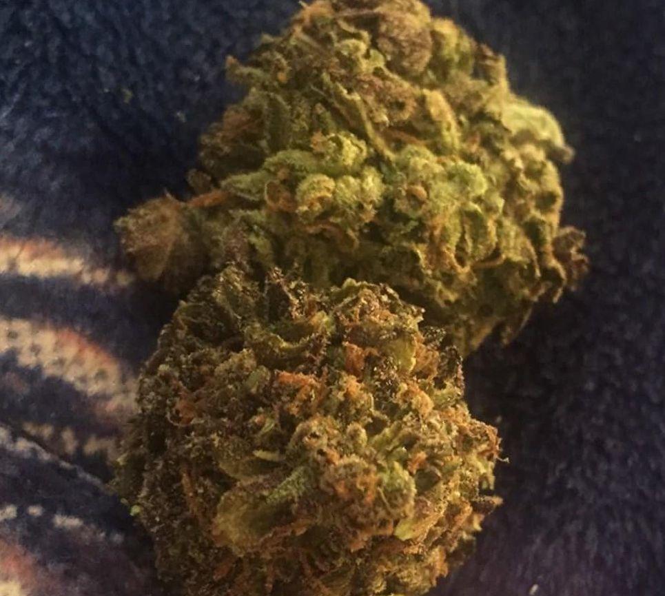 Cannabis Bubblegum Strain