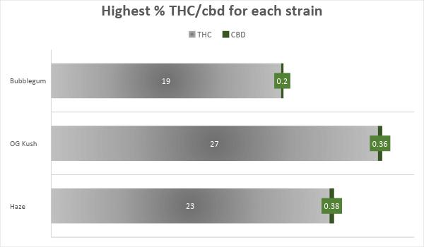 Cannabis Bubblegum Strain THC CBD