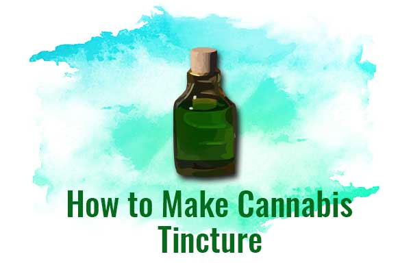 How to Make Cannabis Tincture: Best Recipes - NCSM