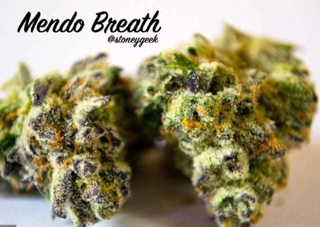 Mendo Breath Strain weed photo