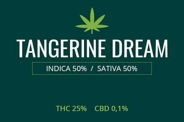Tangerine Dream Marijuana Strain