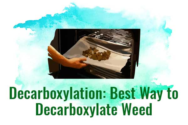 Decarboxylation: Best Way to Decarboxylate Weed - NCSM