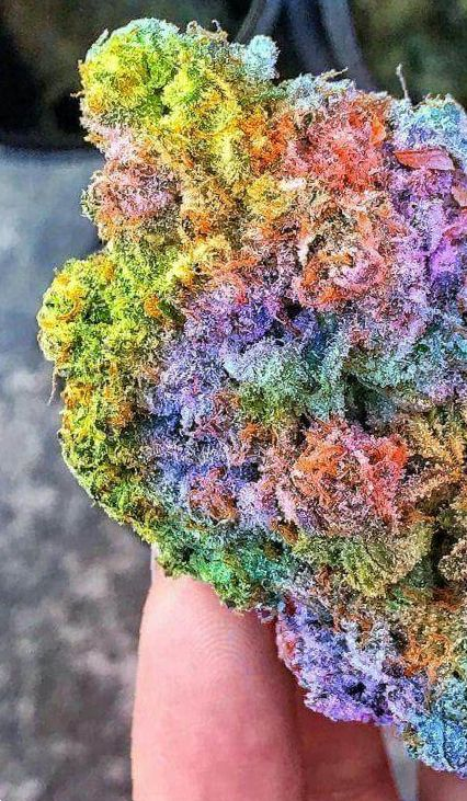 colorful marijuana