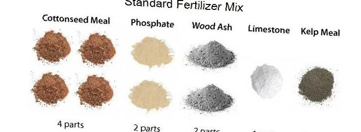 Homemade fertilizers