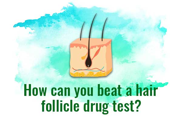 How to pass a hair follicle drug test?