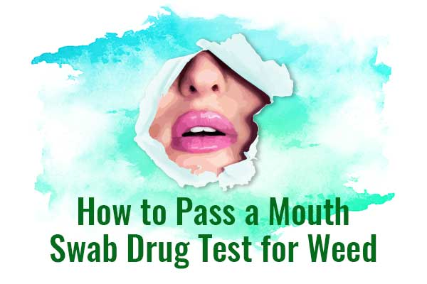 How to Pass a Mouth Swab Drug Test? Oral saliva drug test