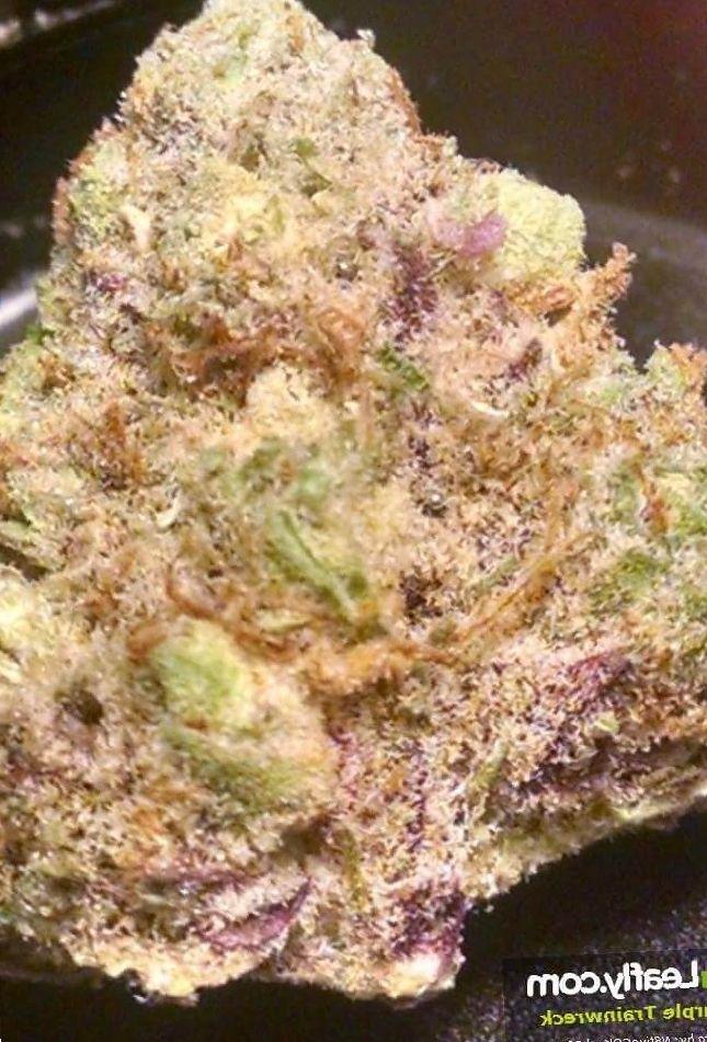 Purple Trainwreck weed photo