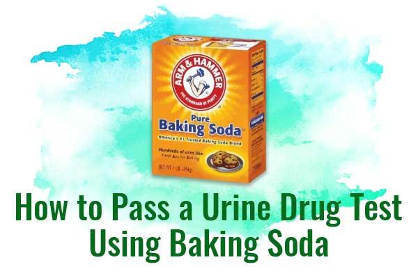 How to Pass a Urine Drug Test Using Baking Soda - NCSM : Nederlandse