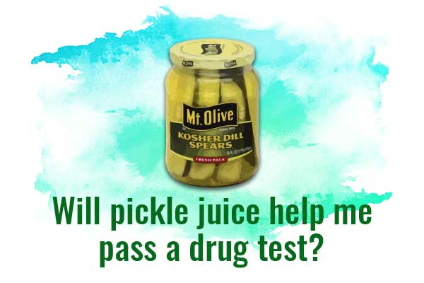 Pickle juice helps to pass a drug test