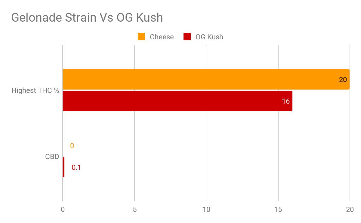 Cheese Strain THC CBD